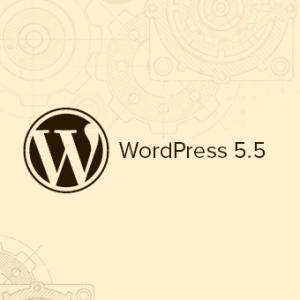 ویژگیهای نسخه ۵.۵ وردپرس